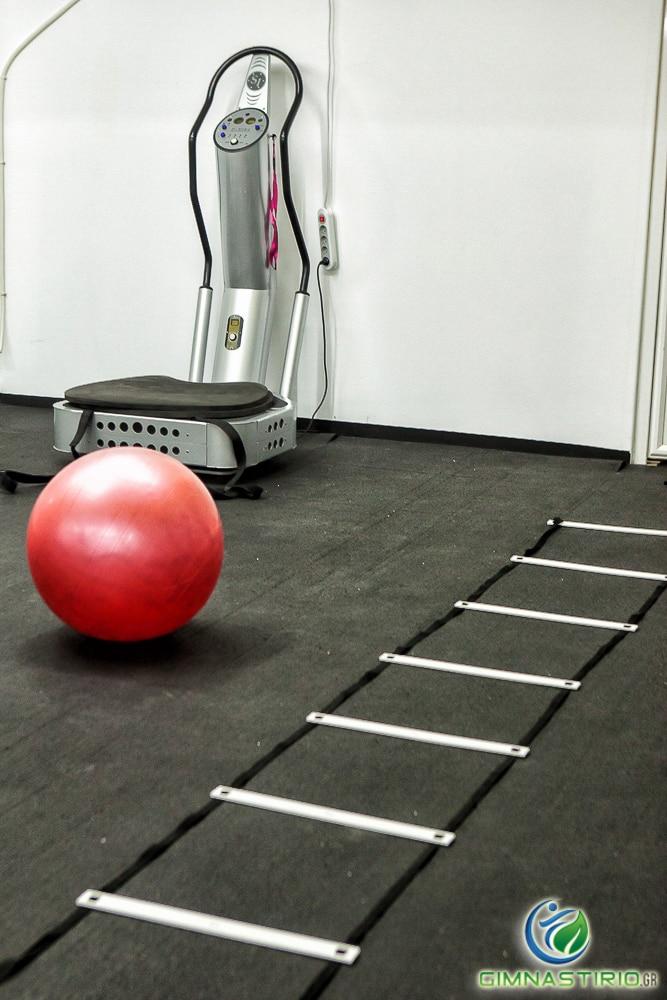entasis gym 10