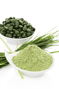 rainforest_foods_spirulina_powder